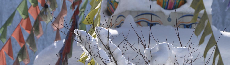 Dathün Un mois de retraite de méditation silencieuse